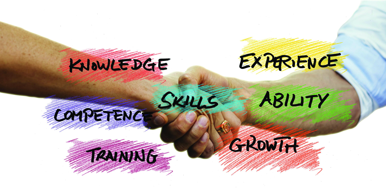 skills experience training