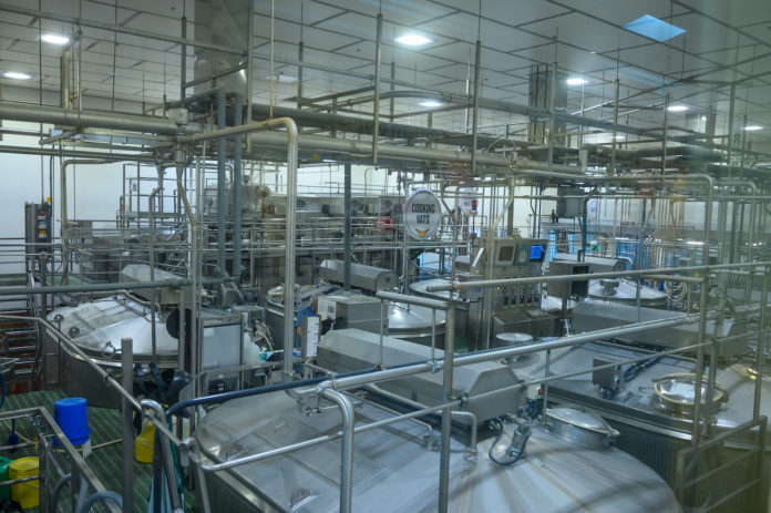 Plant and production of dairy products. Cheeses, milk